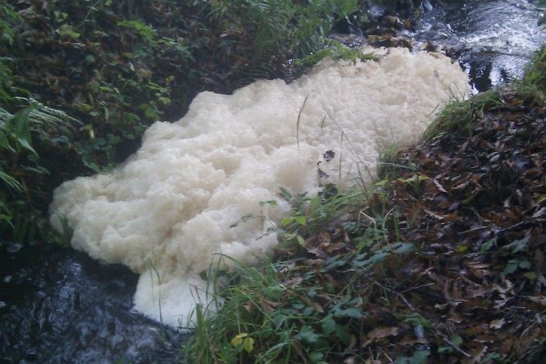 foam in a stream