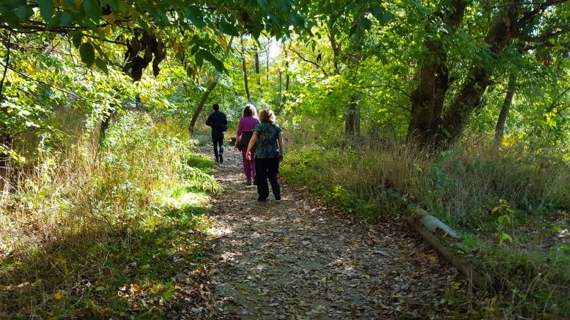 People walking on a nature trail