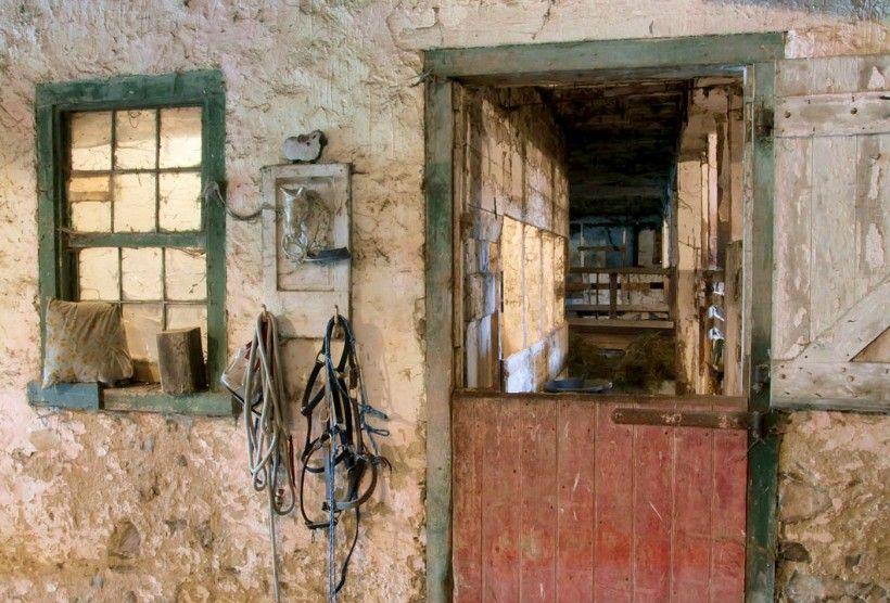 Stall at Kuerner Farm