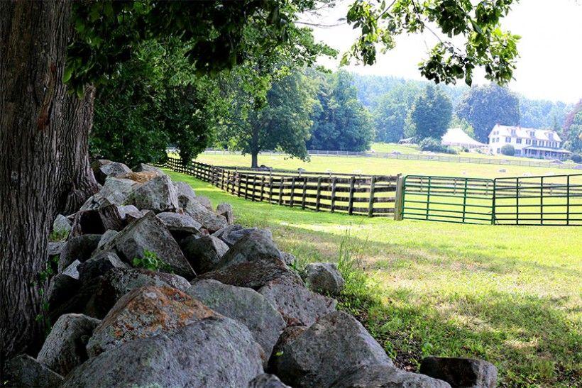farm with rocks