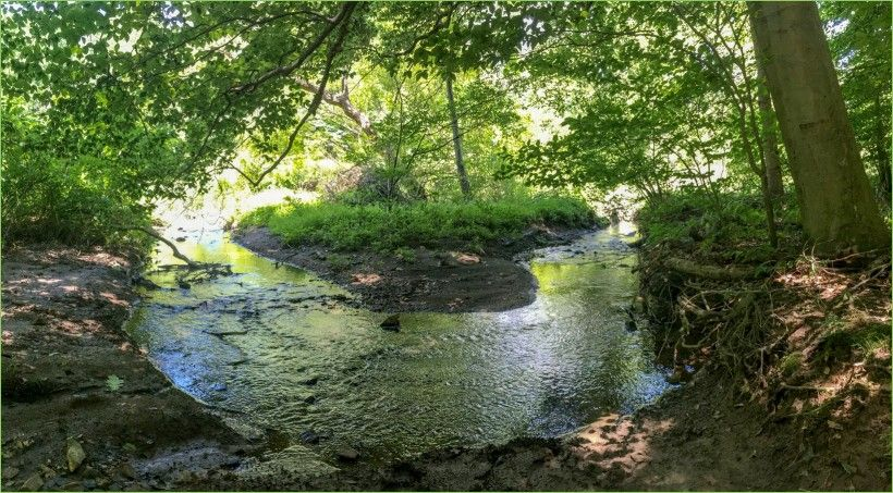 wide view of creek