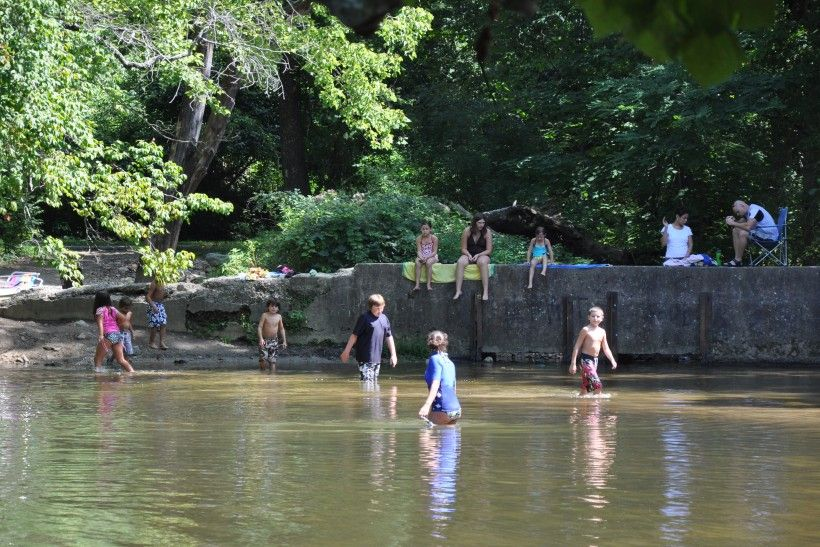 Brandywine Creek Greenway Swimmers