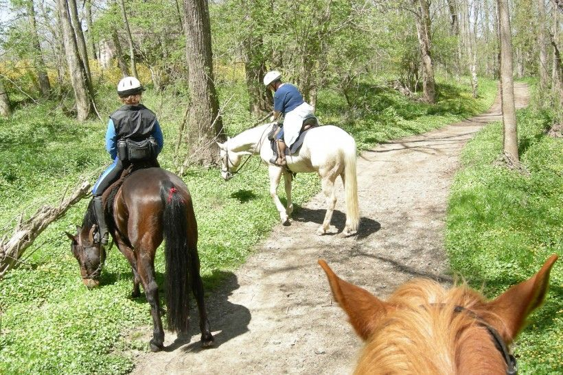 Brandywine Creek Greenway Trail Riders
