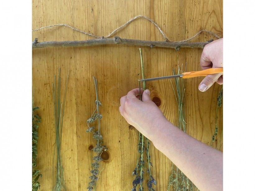 Dried Flower Wall Art
