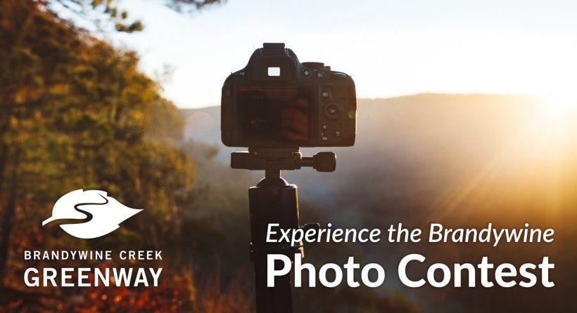 photo contest graphic