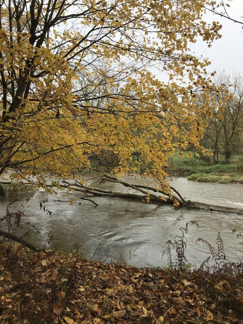 Stream running through Glenroy Farms