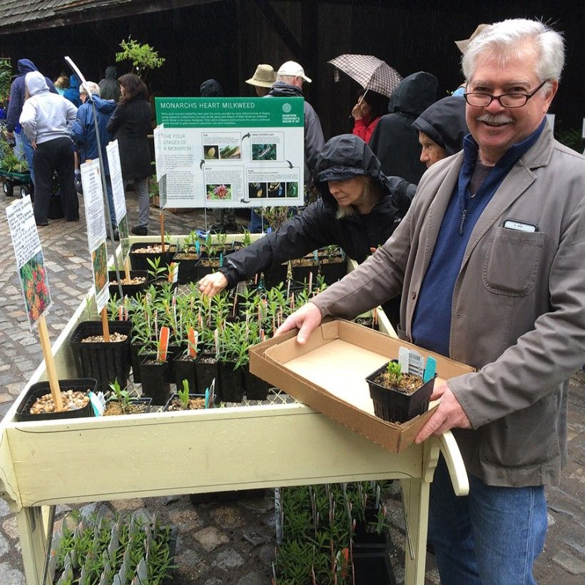 Volunteer at the plant sale