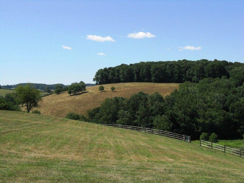 King Ranch landscape