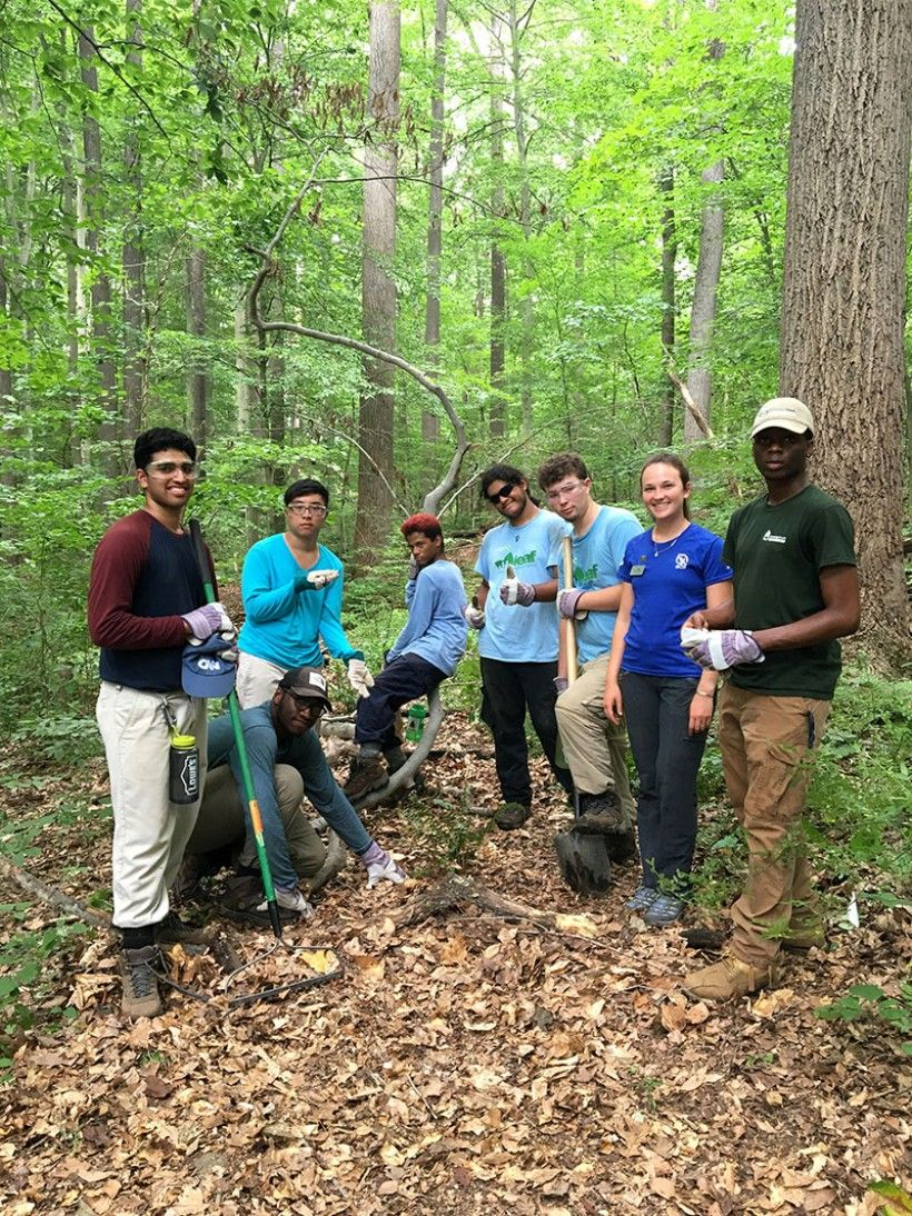 The interns clear away trash and invasive species at First State. © Nora Reynolds (National Park Service)