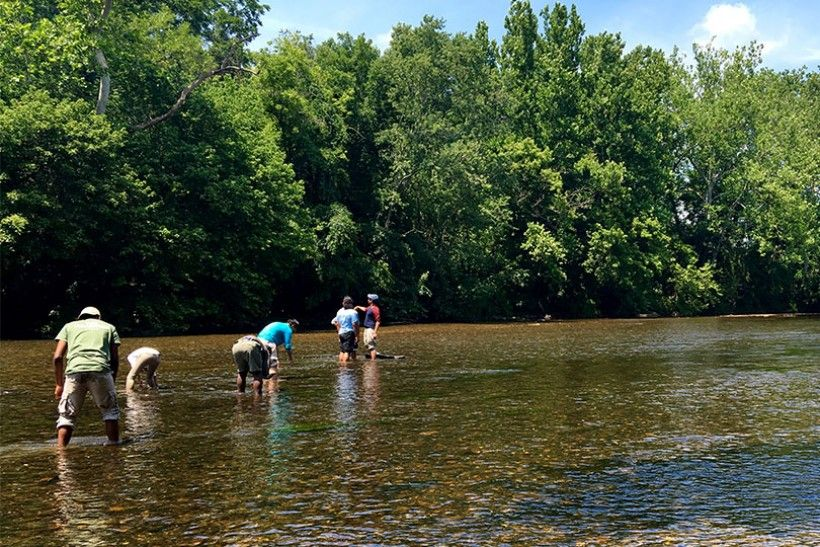 The interns enjoy the Brandywine Creek after a day of field work. © Nora Reynolds (National Park Service)