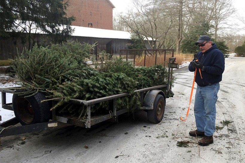 David Montgomery, Research Technician and Research Watershed Technician, Stroud Water Research Center, loading the trees at the Brandywine Conservancy & Museum of Art
