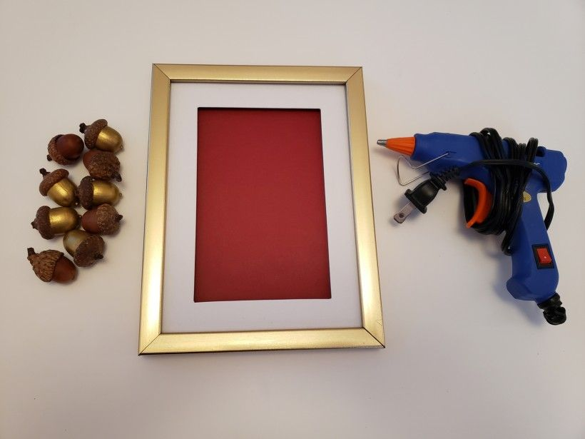 framed acorns