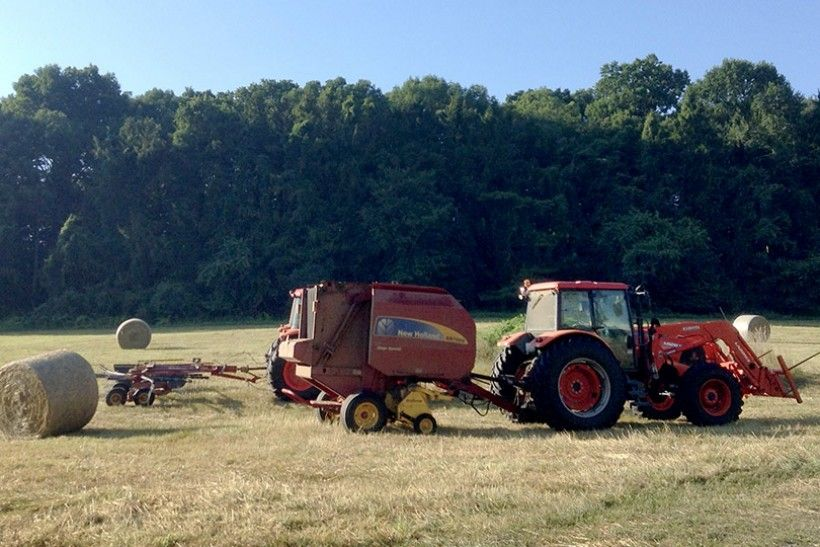 Haying at the Kuerner Farm, July 2016