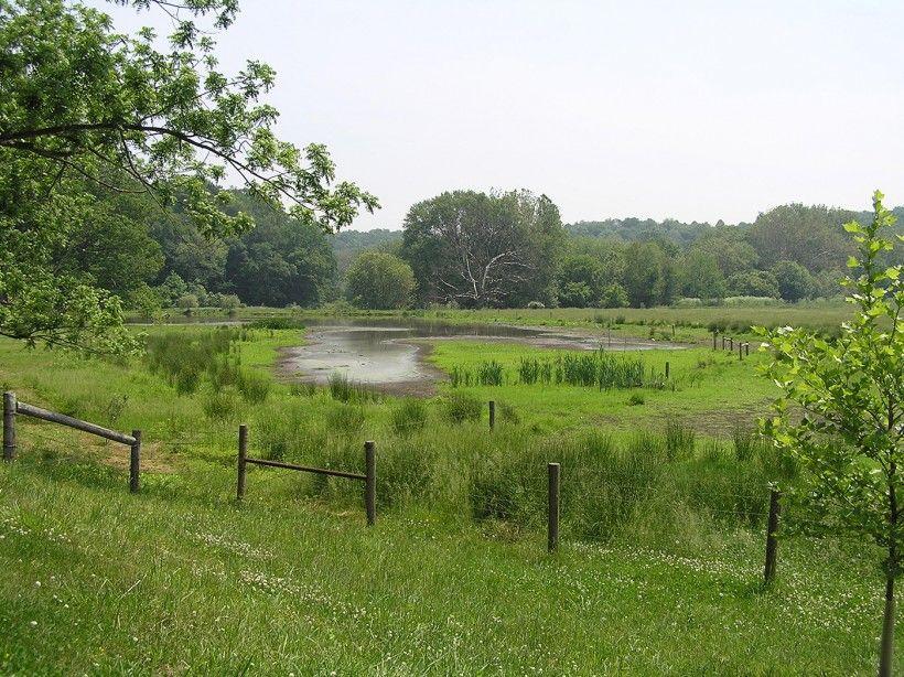 pond fencing