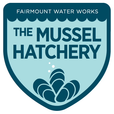 Fairmount Water Works is researching the life cycles of different mussel species and working towards reintroducing them in the wild.
