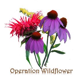 operation wildflower logo