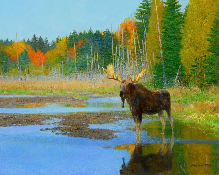 Moose Pond by Douglas Allen